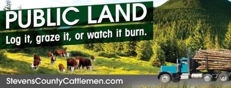scca billboard artwork